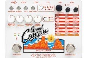 electro-harmonix-grand-canyon-face